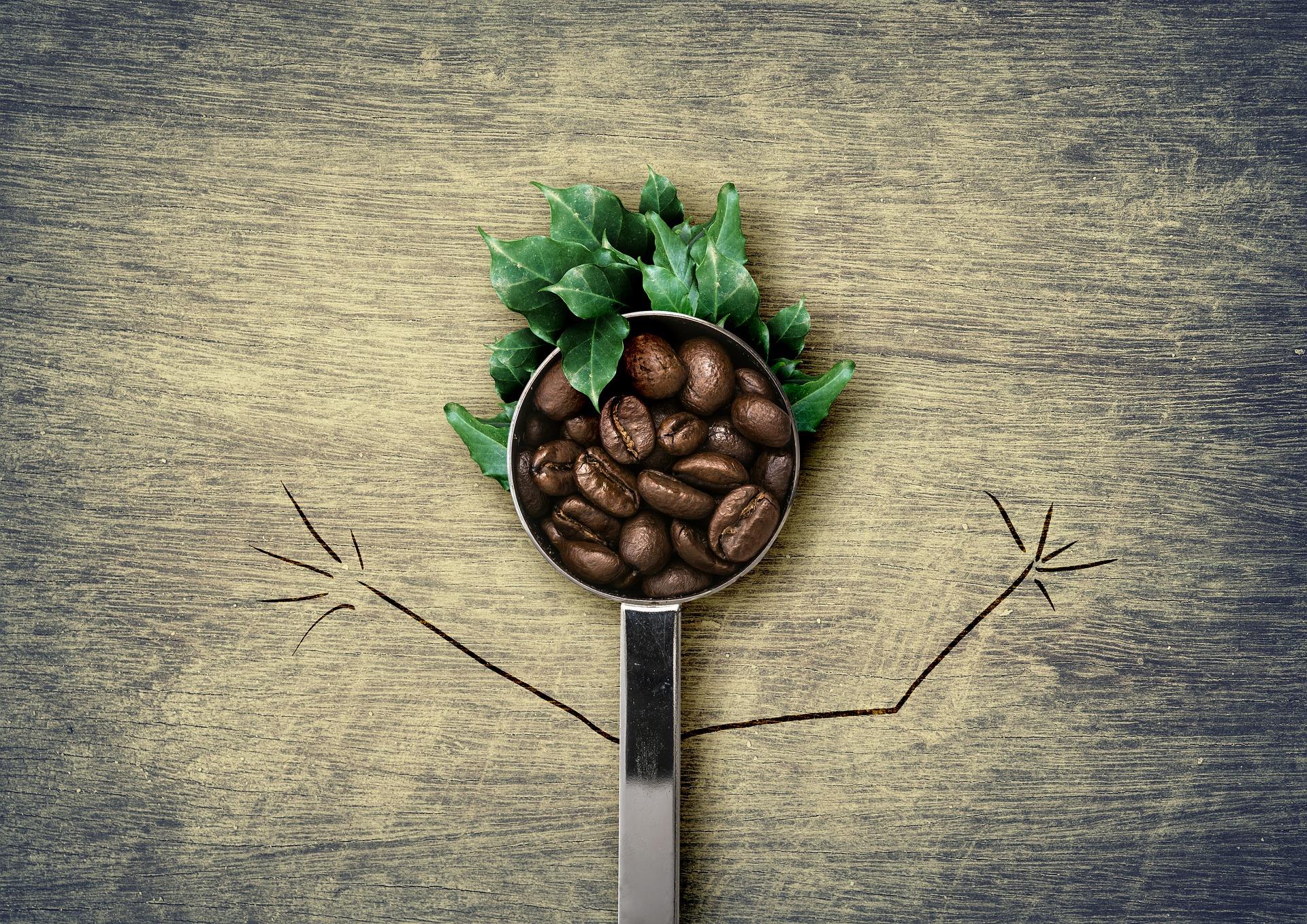 RXB Caffè Verde funziona? Recensioni ed Opinioni