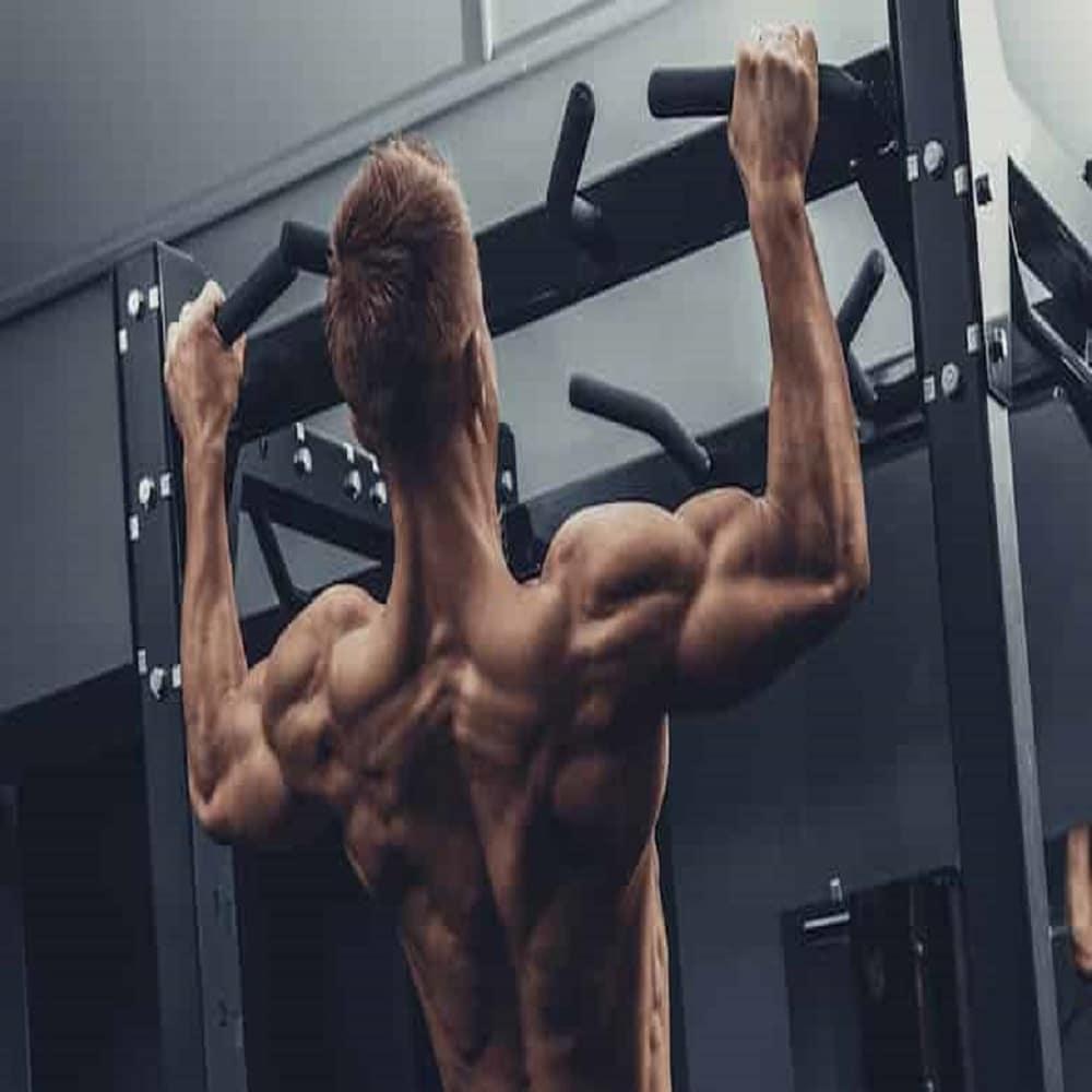 Come allenare i dorsali a casa: esercizi, esecuzioni e consigli