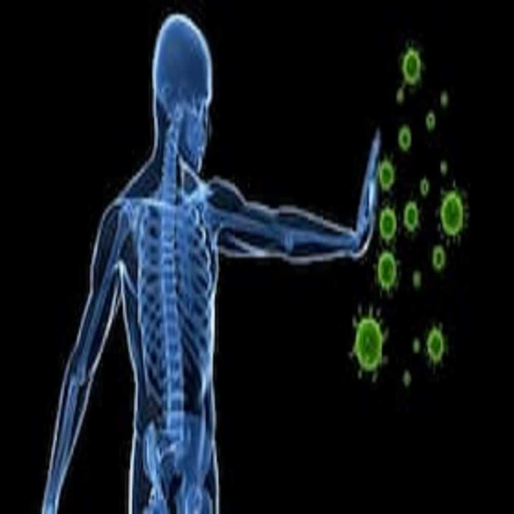 Integratori per difese immunitarie: Classifica dei Migliori