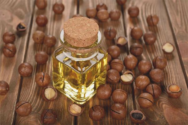 Olio di Macadamia: Proprietà, usi e benefici