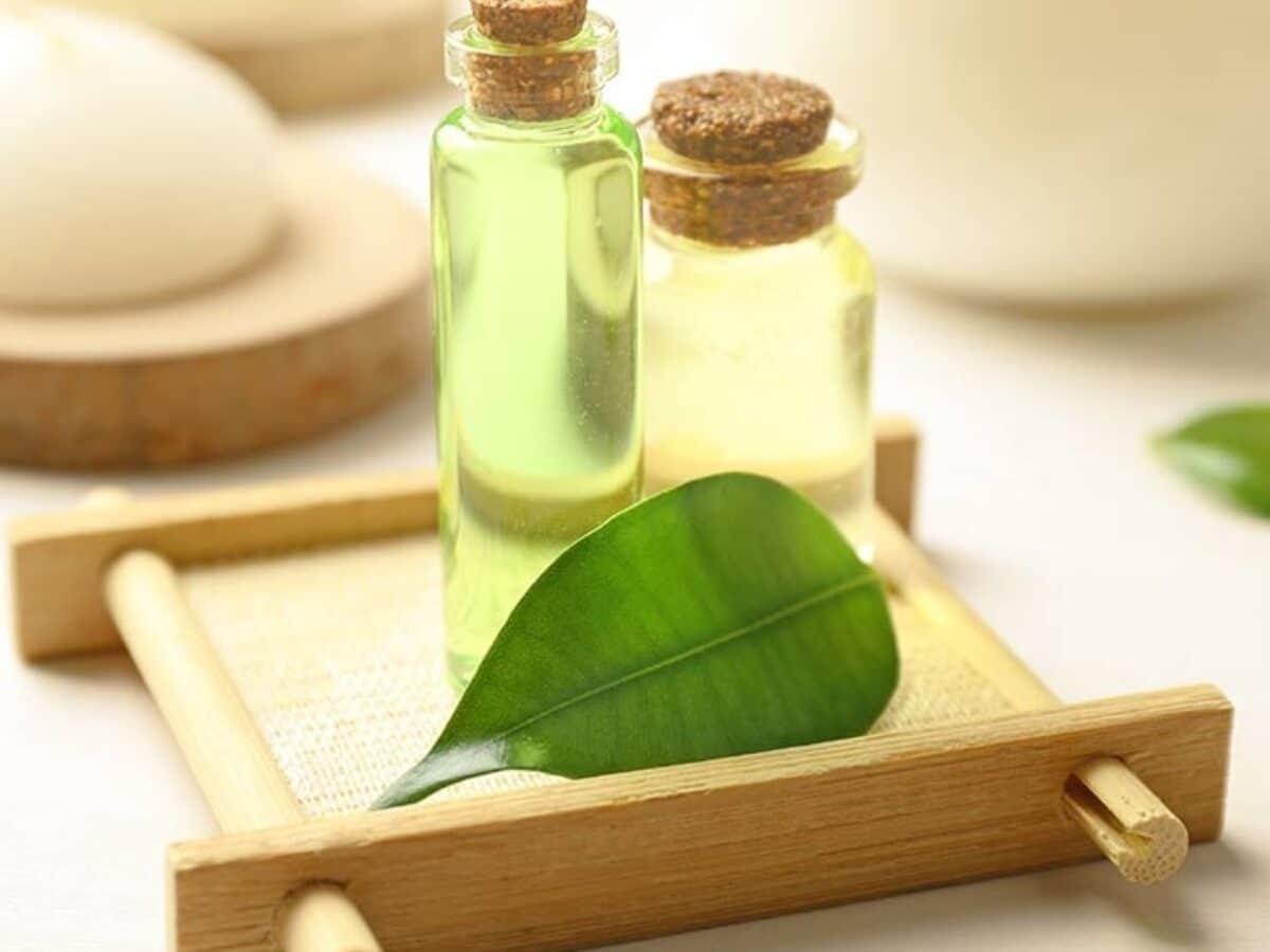 Benefici tea tree oil