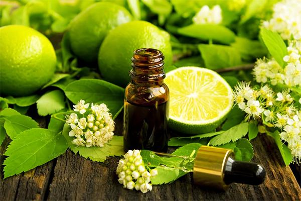 Olio di Bergamotto: Proprietà, usi e benefici