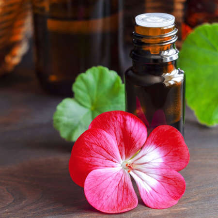 Olio essenziale di geranio idratante