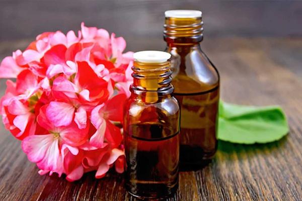 Olio di Geranio: Proprietà, usi e benefici