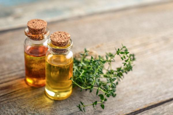 Olio di Timo: Proprietà, usi e benefici