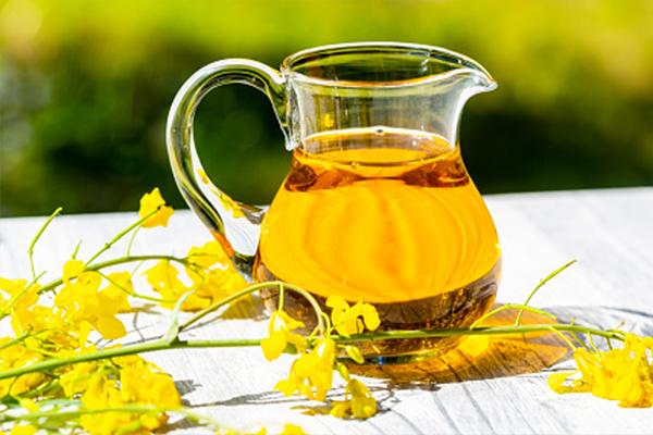 Olio di Colza: Proprietà, usi e benefici